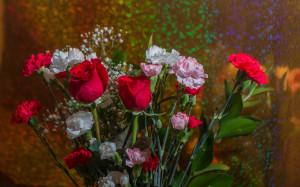 rainbowflowers-37