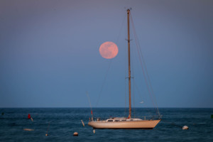 scituate-23
