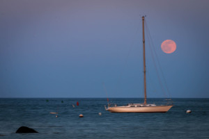 scituate-24