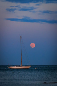 scituate-31